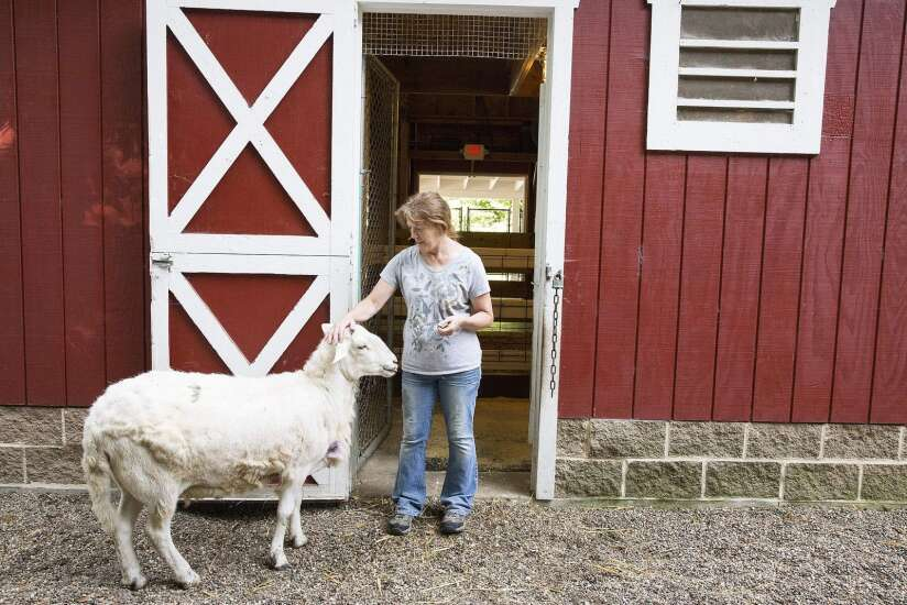 Jennifer Morrison and Old MacDonald's Farm