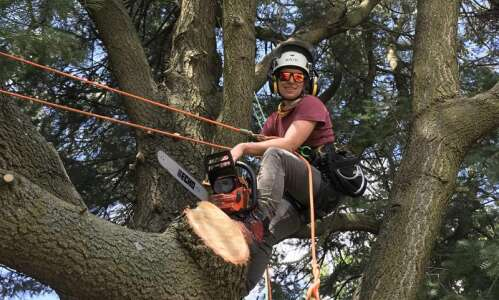 Arborist appreciates how much trees bring to our lives —…
